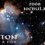 Gitton Pere et Fils 'Nebula' Pouilly Fumé
